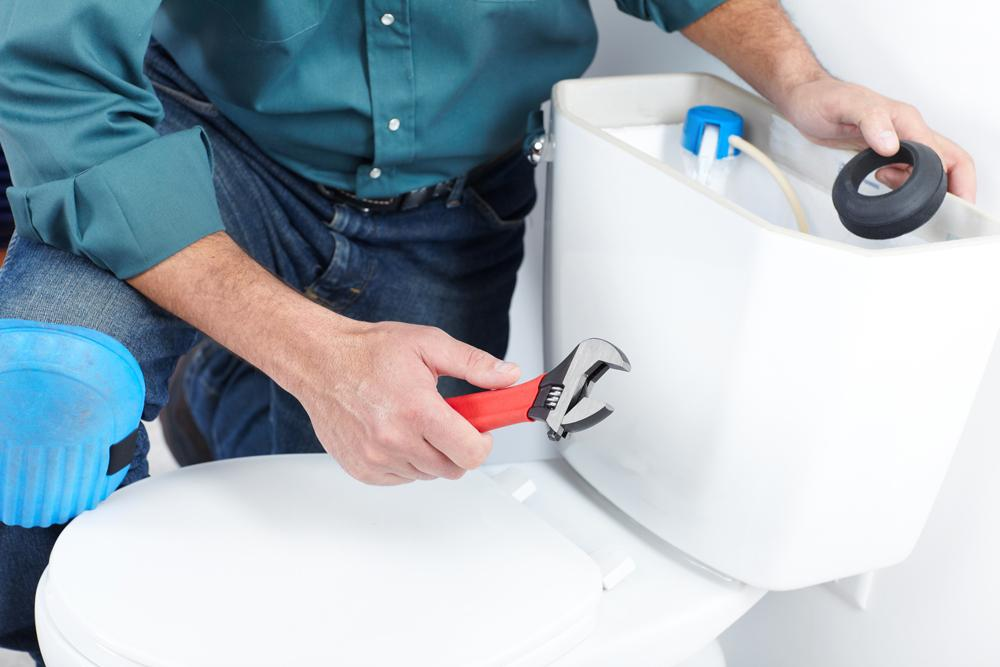 Toilet Repair and Replacement